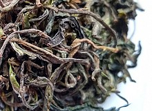 Darjeeling Goomtee Spring Oolong, First Flush 2018, EX-06